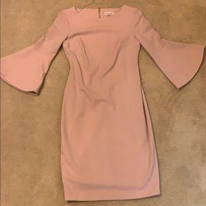 Blush Bell Sleeved Dress